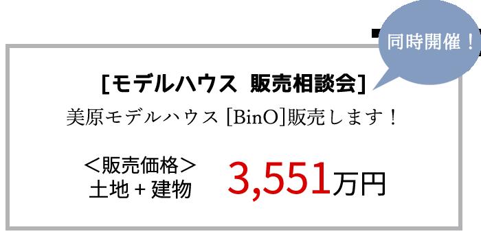 mihara_bino2.png
