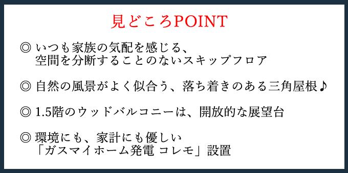 mihara_bino3.png