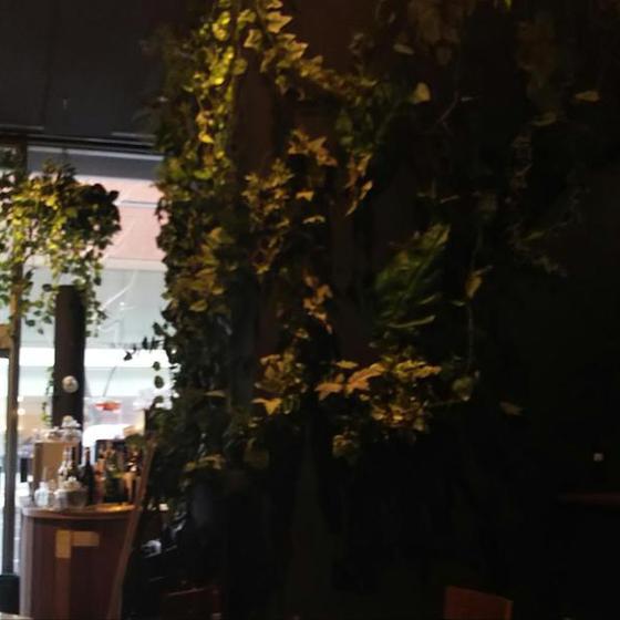 函館から札幌へ こだわりの室内空間で     リフォームショップ ハウジング・コバヤシ