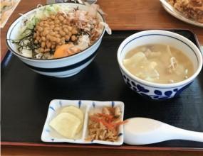 函館の食堂シリーズ って何?