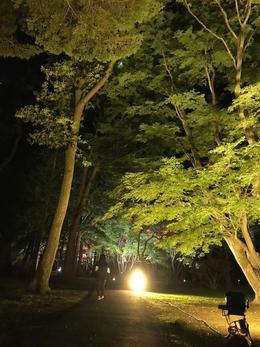 秋ですね@函館 ハウジング・コバヤシ リフォームショップ リノベーション