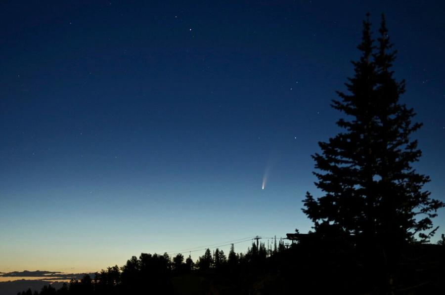 4352_Comet_in_the_night_sky_with_trees_in_the_foreground.jpeg